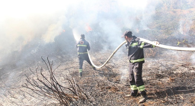 Firefighters trying to put out field fires in Samegrelo-Zemo Svaneti municipality
